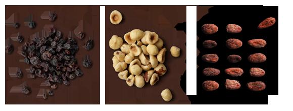 Hazelnut & Currant