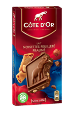 Bloc Chocolat Côte d'Or au Lait Noisettes Feuilleté Praliné