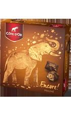 Chocolat Cote dOr Encore Praline 355g
