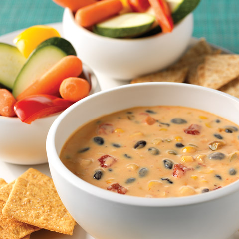 Spicy Mexican Cheese and Bean Dip Recipe