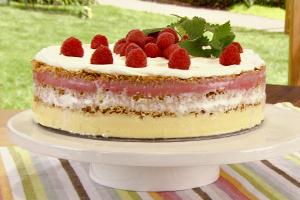 Frozen Layered Sorbet Torte Recipe
