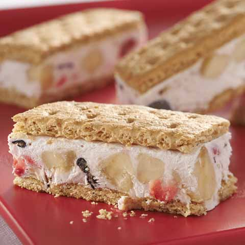 Banana-Berry Frozen Yogurt Bars Recipe