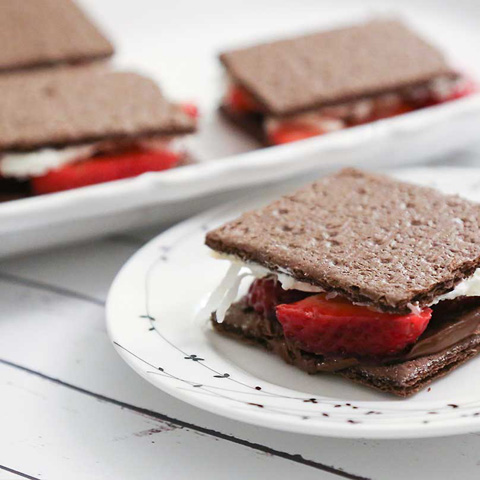 Double-Chocolate Grahamwiches Recipe
