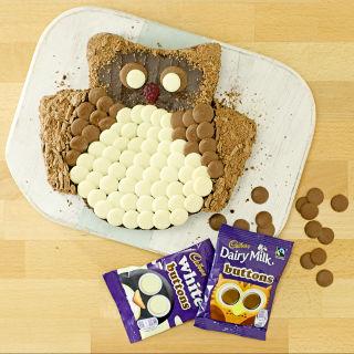 delicious cadbury dairy milk buttons owl cake