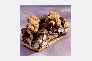 Teddy Wants S'mores Recipe
