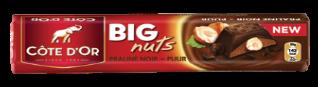 Chocolat Big Nuts Praliné Noir Côte d'Or