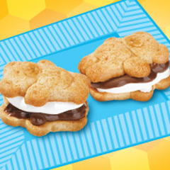 Easy Mini S'mores Recipe