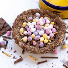 mini eggs happy nesters