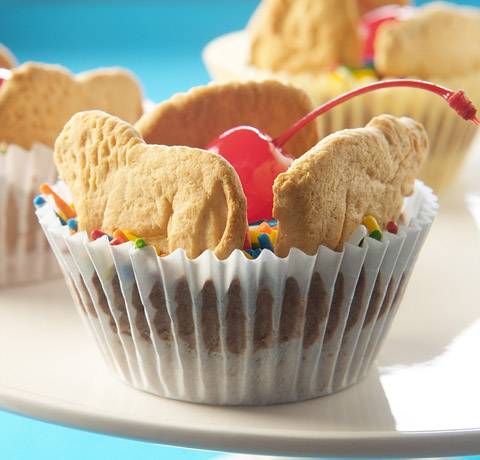 BARNUM'S® Pudding Cups Recipe